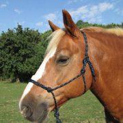 Idolo Horse Pressure Control Halter