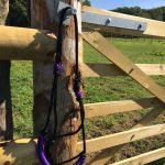 Idolo Coloured Noseband Pressure Control Horse Halters