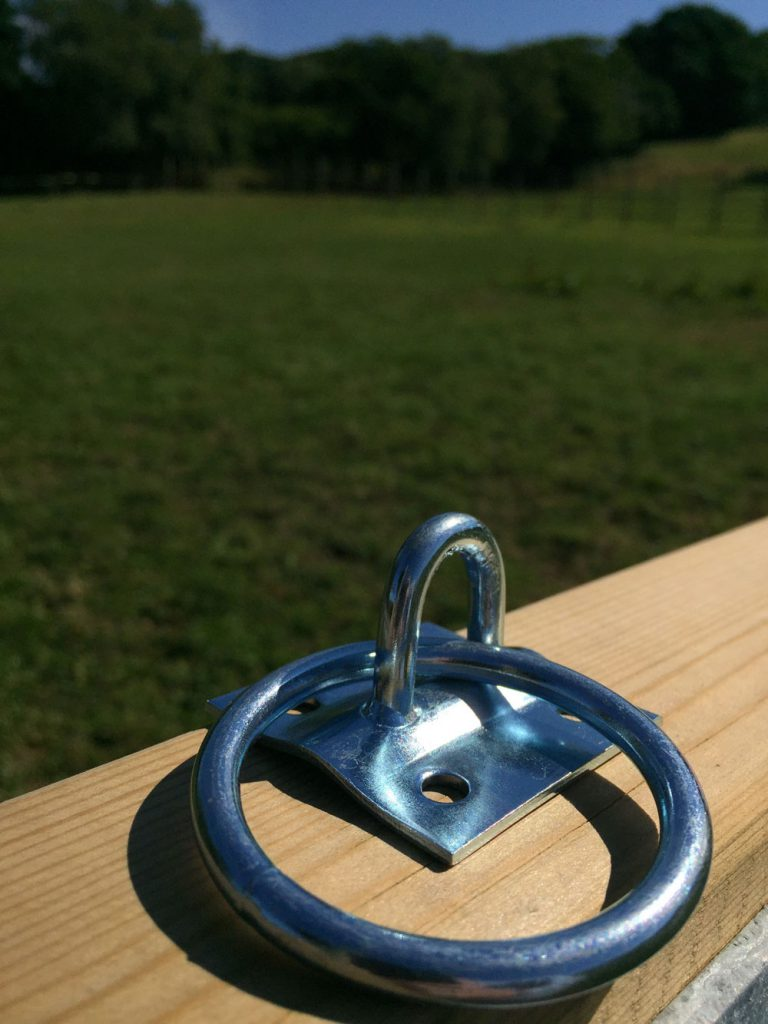 Idolo tie ring and plate for horses